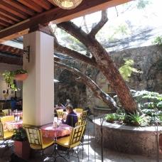 Café Santa Ana 1
